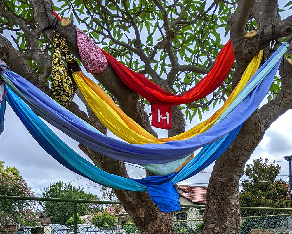 4 hammocks in a tree including a red and blue hammock