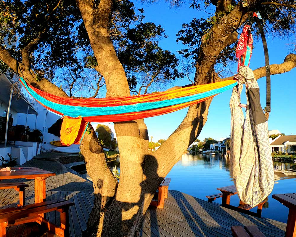 Hammbag in a tree in a hammock